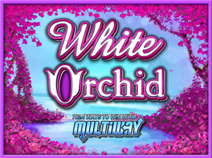 White Orchid Slot Machine Free Download